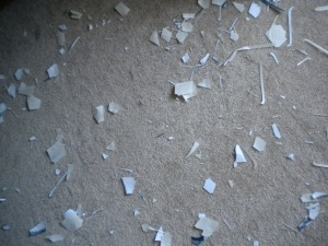 pieces of paper on carpet