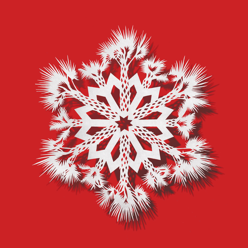 Bovey Lee, Palm Tree Snowflake #7, 2013